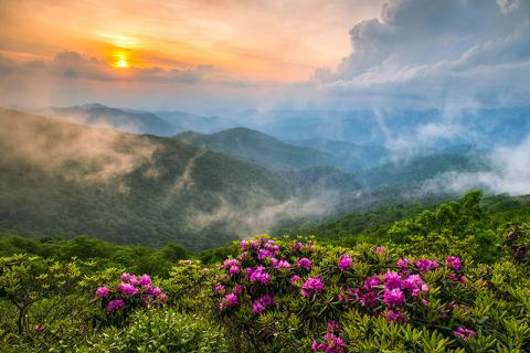 Mountains, flowers, sunrise in Asheville, NC