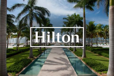 Hilton, pathway to the water between two palm trees